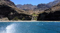 Aldea Village and Gui Gui Beach Boat Tour, Gran Canaria