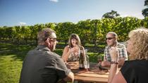 Martinborough Wine-Tasting Tour from Wellington, Wellington