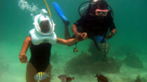 Punta Cana Seaquarium Underwater Adventure, Punta Cana, Attraction Tickets