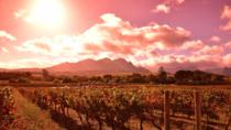 Full-Day Private Winelands Tour from Cape Town, Cape Town, Private Sightseeing Tours