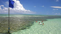 Full-Day Visit to Paripueira Beach and Tide Pools in Maceió, Maceió, Day Trips