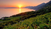 Peljesac Wine Tour, Split, Wine Tasting & Winery Tours