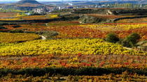 Customized Basque Country Private Day Tour, Bilbao, Custom Private Tours