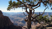Grand Canyon Hike with Sedona and Flagstaff Hotel Pickup, Sedona, Day Trips