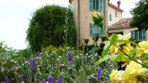 Full Day Tour to Antibes Cannes Grasse and Gourdon from Nice, Nice, Day Trips