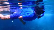 Bavaro Snorkeling Excursion from Punta Cana, Punta Cana, Scuba & Snorkelling