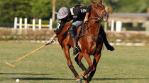 International Polo Club Veuve Clicquot Champagne Brunch Packages, West Palm Beach, Sporting Events...
