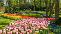 Skip the Line: Keukenhof Gardens Tour and Tulip Farm Visit from Amsterdam, Ámsterdam