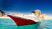 2-Tank Dive for Certified Divers, Los Cabos, Scuba & Snorkelling