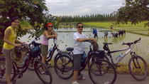 Full-Day Cycling Adventure through the South-Eastern Parts of Chiang Mai, Chiang Mai, Bike &...