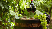 Full-Day Wine Tour of the Paarl Area from Cape Town, Cape Town, Wine Tasting & Winery Tours