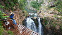 Zipline Canopy Tour in Cape Town, Cape Town, Half-day Tours