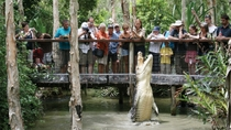 Halbtägige Tour zu Hartley's Crocodile Adventures, Cairns & Tropical North