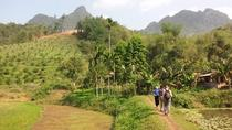 Hoa Binh and Muong Hill Tribe Day Trip from Hanoi, Hanoi, Day Trips