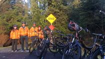 Electric Bike and Hike Guided Eco-Tour, Ketchikan, Eco Tours