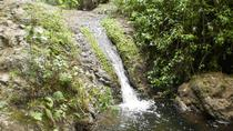 Guided Trekking Tour of Valley of Azuaje , Gran Canaria, Hiking & Camping