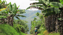 7-Day Biking Tour: Coffee, Cultural and Cocora Valley from Pereira, Pereira, Multi-day Tours