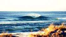 7-Day Byron Bay, Evans Head and Moonee Beach Surf Safari from Brisbane, Gold Coast or Byron Bay, ...