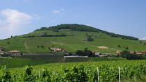 Beaujolais Full Day Wine Tasting Tour , Lyon, Private Sightseeing Tours