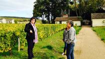 Private Tour: Burgundy Day Tour with Wine Tasting from Lyon, Lyon, Private Tours