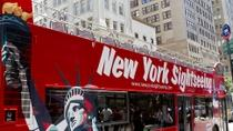 Hop-on-Hop-off-Tour durch New York City, New York City