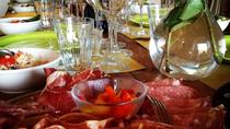 Organic Winery Tour with Wine and Olive Oil Tasting and lunch or dinner, San Gimignano, Wine...