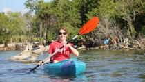Econlockhatchee River Kayaking Tour, Orlando, Kayaking & Canoeing