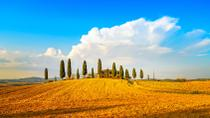 Small-Group Tuscany Wine Country Day Trip from Florence Including Wine Tasting and Lunch, Florence, ...
