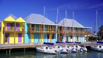 Antigua Shore Excursion: City of St John's Sightseeing Tour, Antígua e Barbados