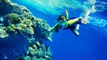 Snorkel and Kayak Adventure in Antigua, Antigua and Barbuda, Sailing Trips