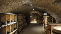 1.5-Hour Burgundy History and Wine Tasting Class, Dijon, Wine Tasting & Winery Tours