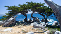 2-Day Monterey, Carmel and Pebble Beach Tour from San Francisco, San Francisco, Multi-day Tours