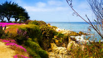 Private Monterey and Carmel Day Trip from San Francisco, San Francisco, Private Tours