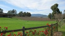 Private Yarra Valley and Wineries Trike Day Trip for Two from Melbourne, Melbourne, Motorcycle Tours
