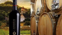 The Wine Route Tour Including Winery Visit from Prague, Prague, Wine Tasting & Winery Tours