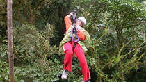 Zipline and Rainforest Aerial Tram Tour from Puntarenas, Puntarenas, Ports of Call Tours