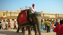 Private Jaipur Sightseeing Tour Including the Amer Fort and Jantar Mantar with an Elephant Ride,...