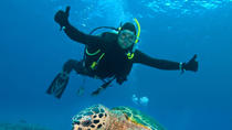 Nassau Shore Excursion: 2-Tank Dive Adventure, Nassau, Ports of Call Tours