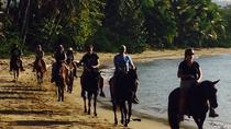 Beach Horseback Riding in Puerto Plata, Puerto Plata, 4WD, ATV & Off-Road Tours