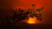 Evening Volcano Adventure, Big Island of Hawaii, Nature & Wildlife