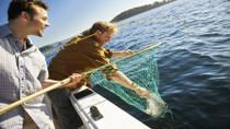 Key West Backcountry or Flats Fishing Charter, Key West, Fishing Charters & Tours