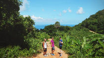 Tour to Big Buddha and Jungle Trek with Lunch in Phuket, Phuket