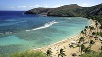 Hanauma Bay Snorkeling Adventure Half-Day Tour, Oahu, null