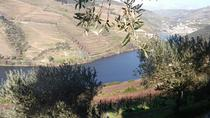Douro Valley Private Day Trip from Porto with Lunch and Wine Tasting, Porto