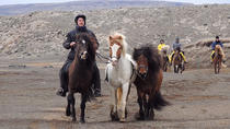 3-Day Horseback Riding Adventure from Reykjavik, Reykjavik, Multi-day Tours
