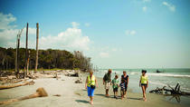 Capers Island Wildlife Exploration, South Carolina, Family Friendly Tours & Activities