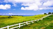 Private Tour: Hawaii: Biologische Landwirtschaft & Merriman's Restaurant, Big Island of Hawaii, ...