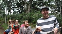 Coffee Museum and Coffee Tour in Coatepec, Central Mexico, Food Tours