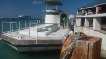 Grand Cayman Nautilus Undersea Tour, Cayman Islands, Submarine Tours