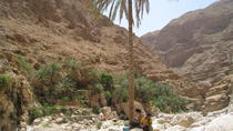 Private Full-Day Wadi Shab Tour From Muscat, Muscat
